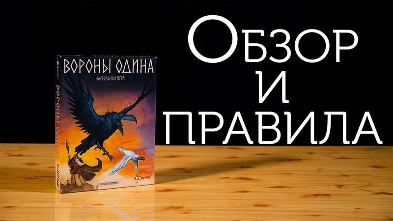 Обзор и правила настольной игры Вороны Одина