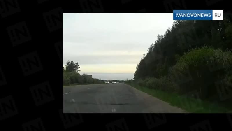 Лось на трассе под Ивановом
