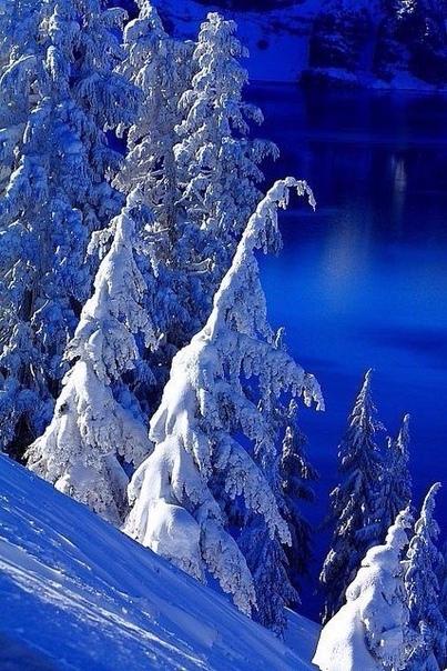 Говорят, зимой случаются чудеса.