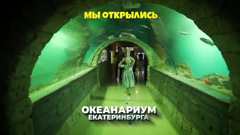 МЫ ОТКРЫЛИСЬ Океанариум Екатеринбурга