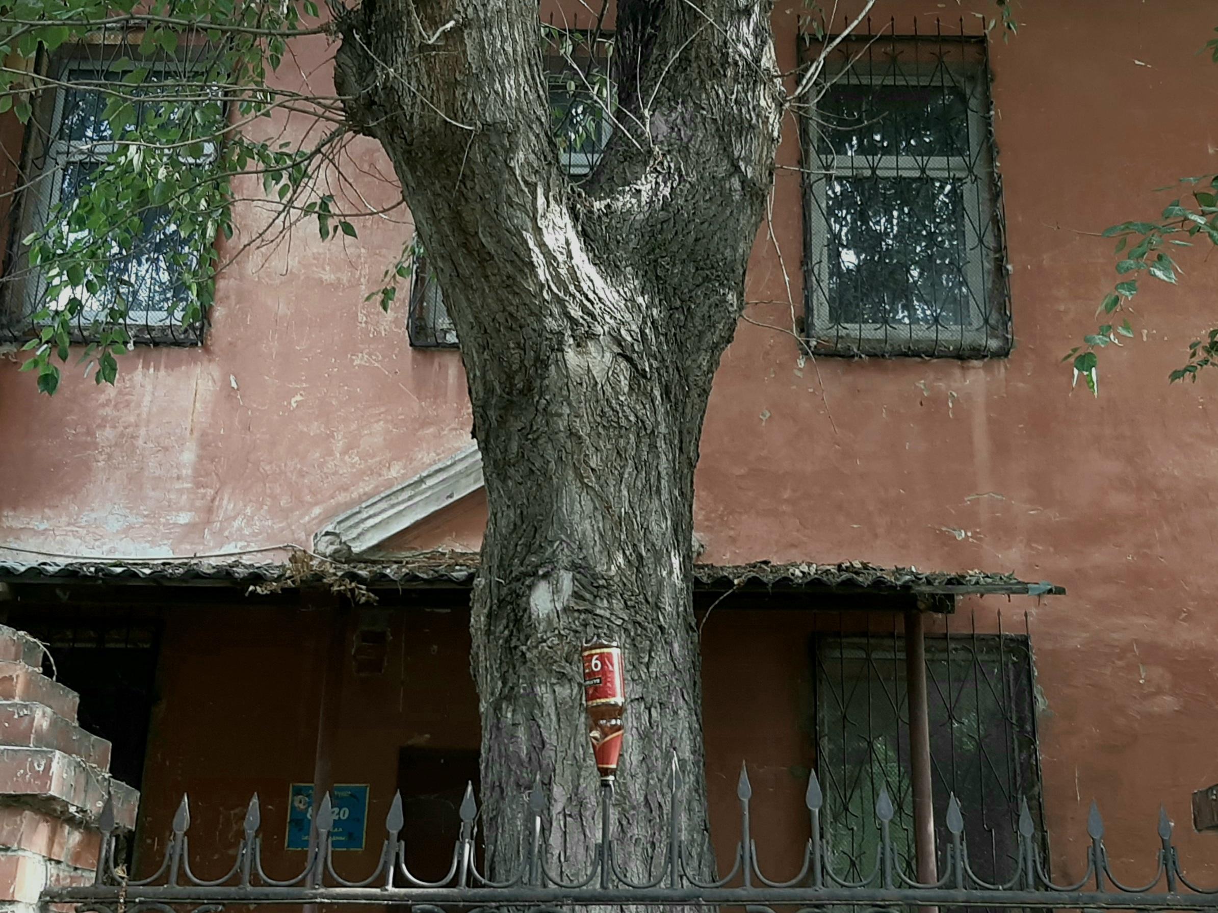 Челябинский дом-монстр - Фото