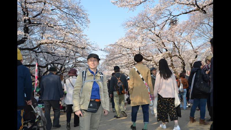 Саша и Япония 1