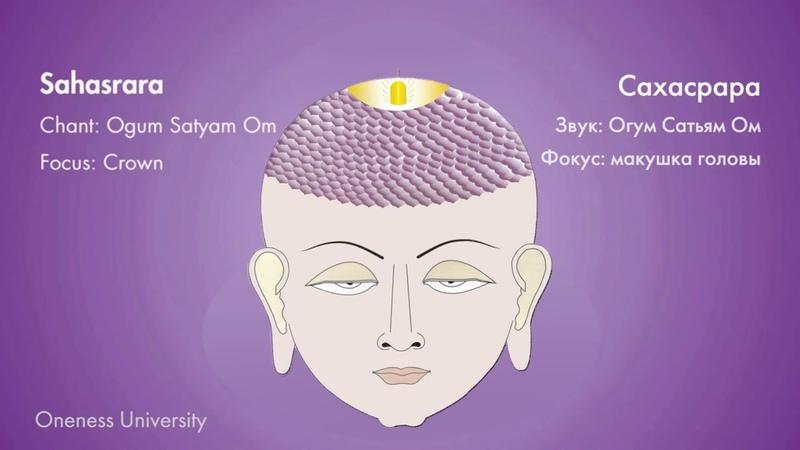 Чакра медитация | Chakra Dhyana
