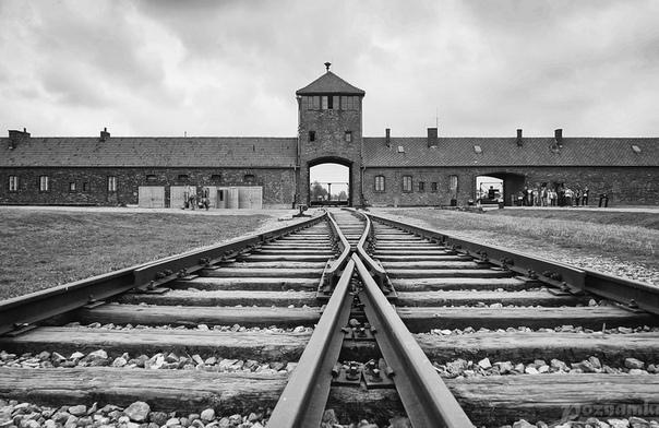 Анжел, еврей, владелец самой знаменитой пекарни в Германии, часто говорил: «Знаете, почему я сегодня жив Я был ещё подростком, когда нацисты в Германии безжалостно убивали евреев