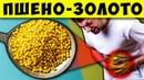 Золотые зёрна Стоят Копейки, а помогают при Болезни Почек, Поджелудочной, Кандидозе, Цистите