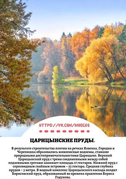 ТОП-8 мест в Царицыно, куда там пойти осенью 🍂🍁...