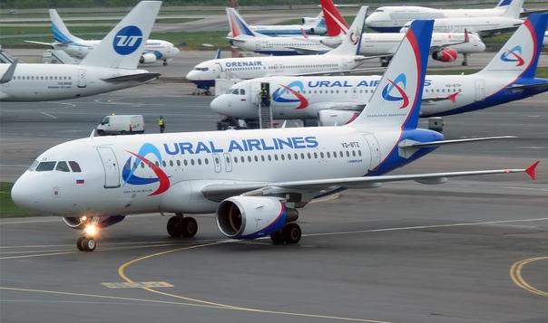 В самолете «Уральских авиалиний», который летел из...