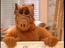 Alf Quote Season 3 Episode 16 Вот ты