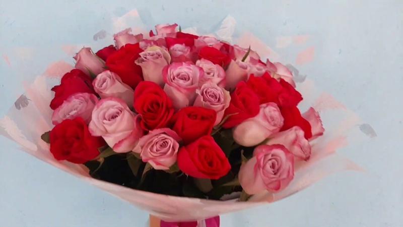 Монобукет из 51 розы Светлячок Доставка цветов в Волгограде