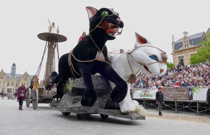 Kattenstoet - фестиваль кошек в Ипре, Бельгия
