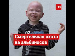 Смертельная охота на альбиносов в Африке