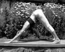 Йога: Упражнения Для Рук