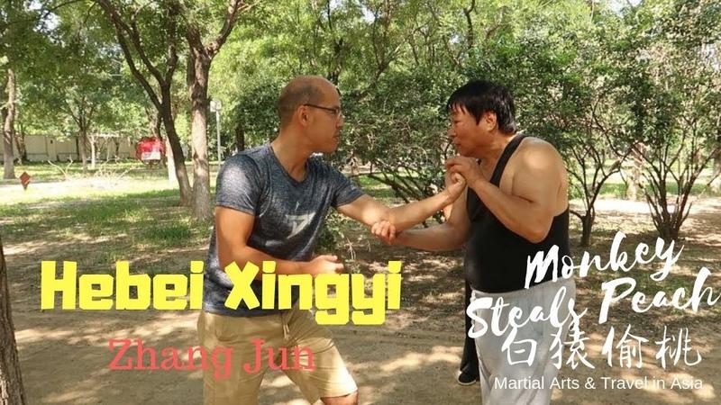 Advanced Hebei Style Xingyi Quan with Zhang Jun - Exploring Xingyi Quan ep2