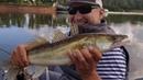 Рыбалка на Белой,щука судак на воблеры и колебалка