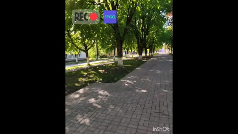ToGO Kaliningrad