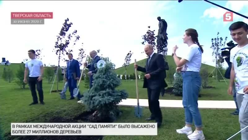Более 27 миллионов деревьев в 50 странах мира высадили участники акции Сад памяти