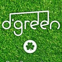 Логотип Группа D'Green / Ирландская фолк-музыка / Ижевск