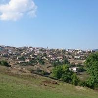 Гасанбеков Насир