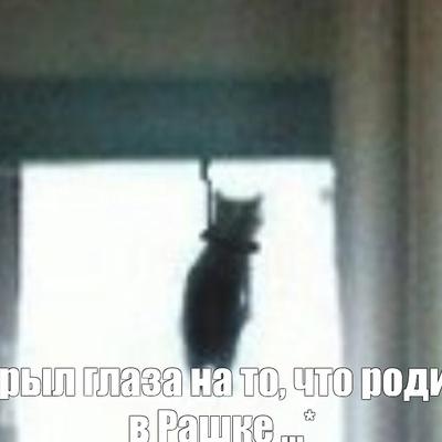 Влад Шпаков