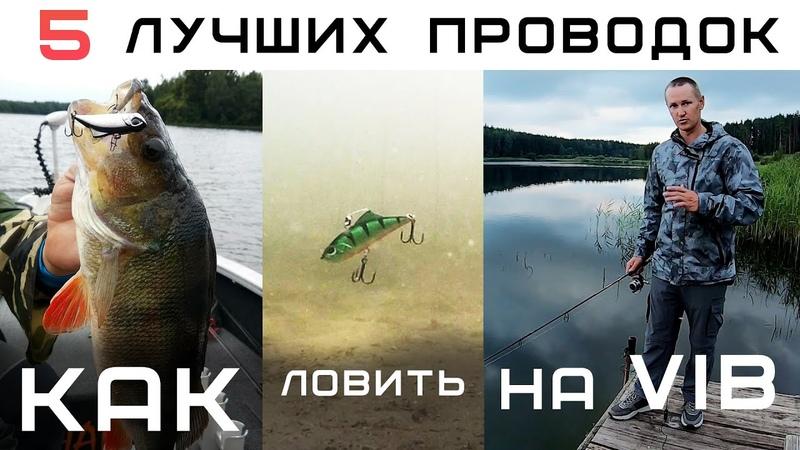Как ловить на РАТТЛИНЫ спиннингом летом 5 ЛУЧШИХ ПРОВОДОК и секреты применения 2020