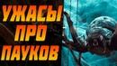 Топ 10 Фильмы ужасов про ПАУКОВ! Самые страшные ужасы. Большие пауки, арахниды, фильмы про пауков.