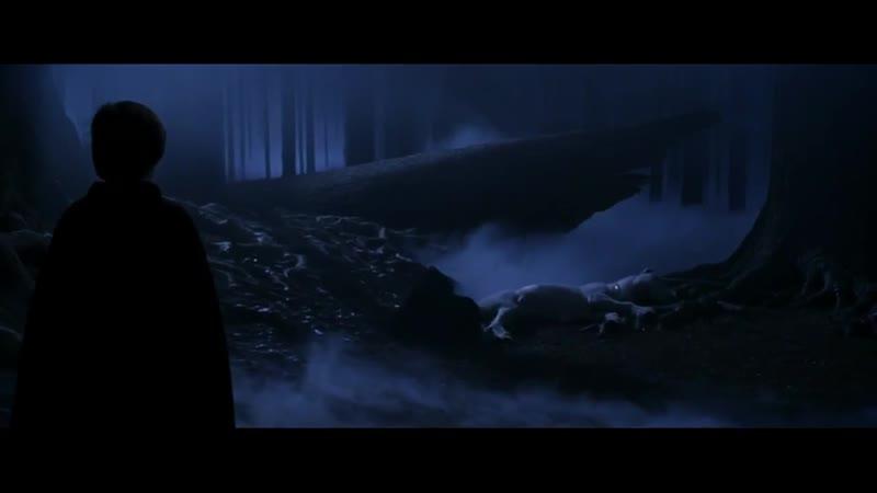 Убийство единорога и нападение Волан Де Морта. Гарри Поттер и философский камень