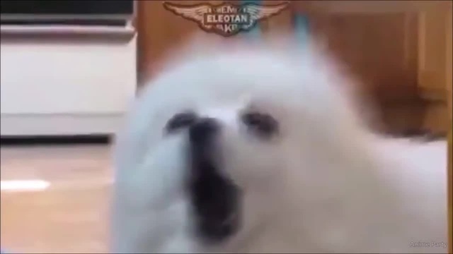 Naruto doggy style