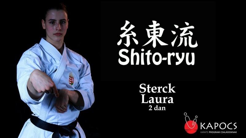 Shito ryu karate bázistechnikák shito ryu kihon waza Kapocs Sportprogram