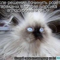 Кобякова Екатерина